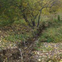 Общественные экологи обнаружили, что Иркутск вознамерились оставить без питьевой воды