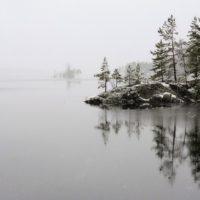 Эксперты назвали самые экологически благополучные страны