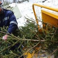 «Елочный круговорот» стартует в Москве 9 января