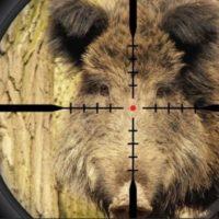 Выставка «Охота и рыболовство» продемонстрировала новейшие способы убийства животных…