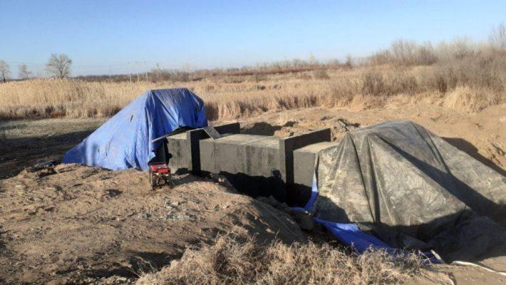 Реабилитация Волги: гидросооружения упёрлись в сухостой