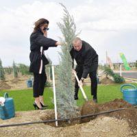Президентская чета посадила деревья в честь дня рождения Гейдара Алиева