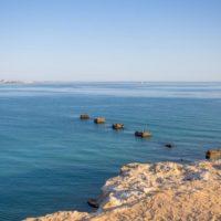 В бассейне Каспийского моря исследуют вселенцев