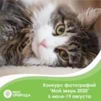 Мосприрода объявила конкурс фотографий «Мой зверь 2020»
