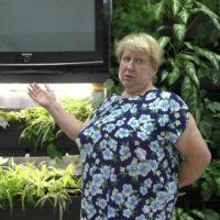 Экологию в жизнь через лоджии и балконы. Наталия Багаева о вертикальных лечебных садах