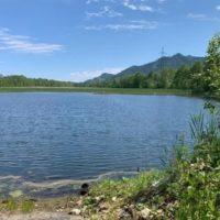 Игорь Кобзев: 20-е августа 2020 года — окончательный срок подготовительных работ по понижению уровня надшламовых вод на БЦБК
