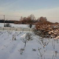 Термометр на биостанции «Маринино» зафиксировал рекордные -31 °C